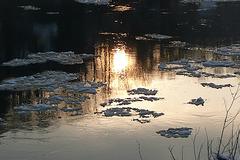Abendsonne auf der Elbe - vespera suno sur la rivero Elbe