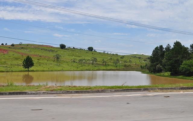 DSC 0443 eau boueuse