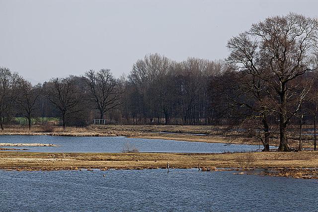 20120309 7577RTw Steinhorster Becken (150)