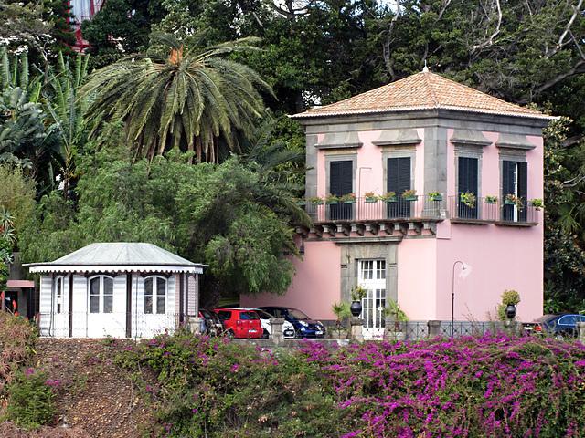 IMG 3258 Funchal