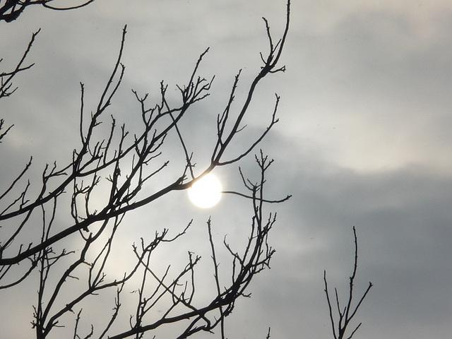 Tél vége - Vintrofino