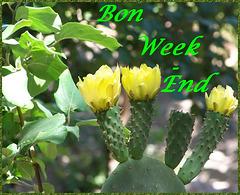 Bon week-end à tous et à toutes