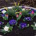 20120301 7233RAw Blumenkübel