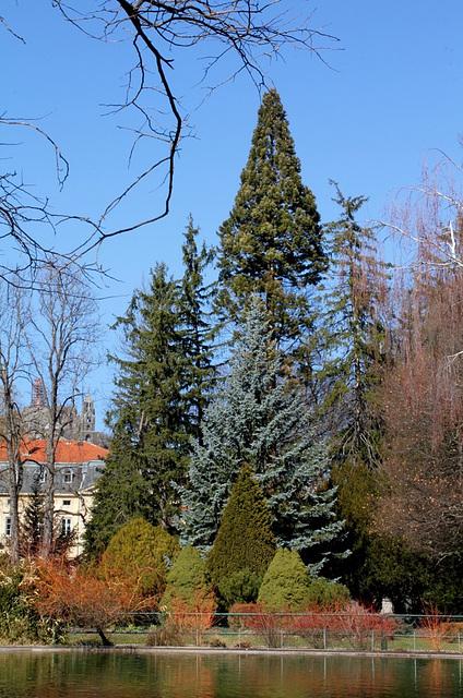 Jardin Vinay