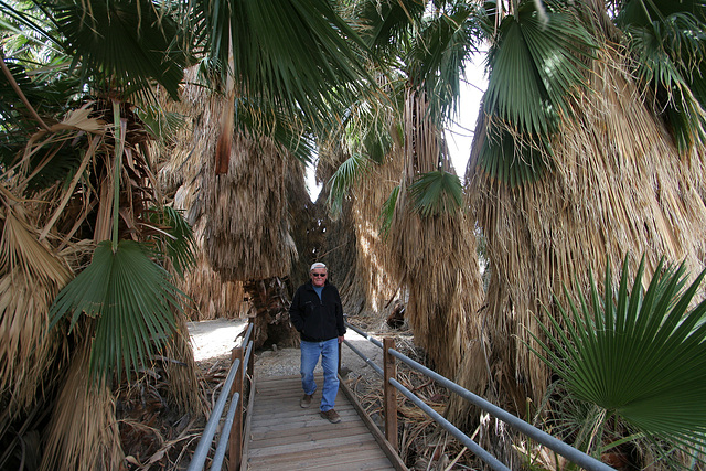 San Andreas Oasis (3458)