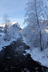 Schneewanderung im Bregenzer Wald