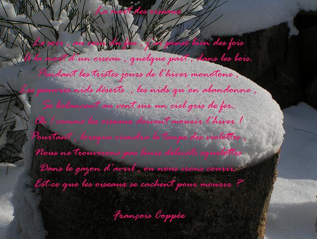 Un petit poème