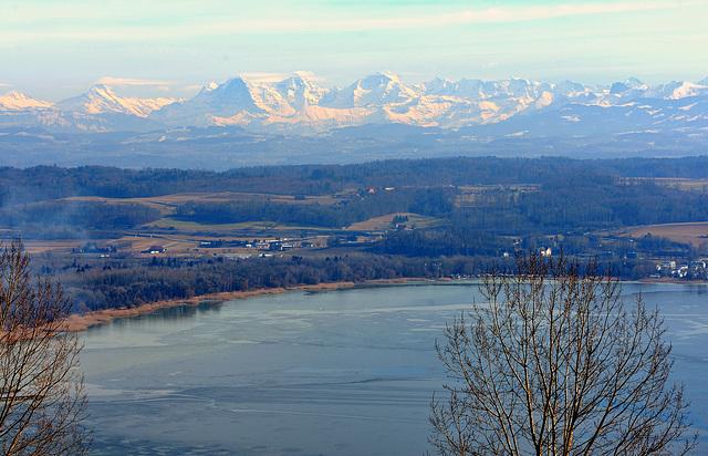 Les Alpes bernoises et le lac de Morat...