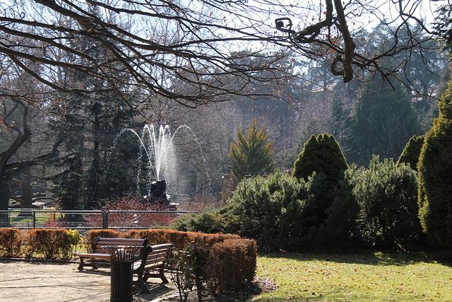 Jardin Vinay (2)