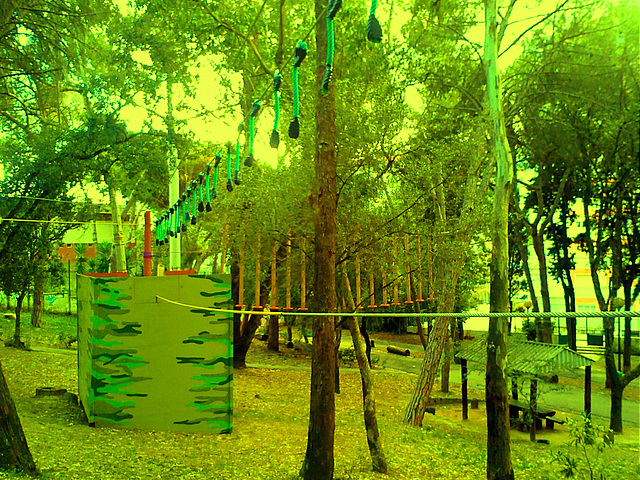 Park Adventure (3)