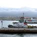 IMG 3096 Hafen Las Palmas