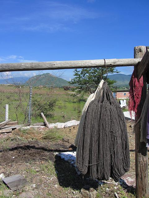 Wolle trocknet