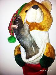 A Ratty Christmas