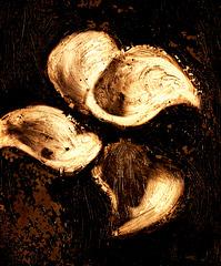 Caravaggio Remembered