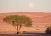 Big Moon in the Desert