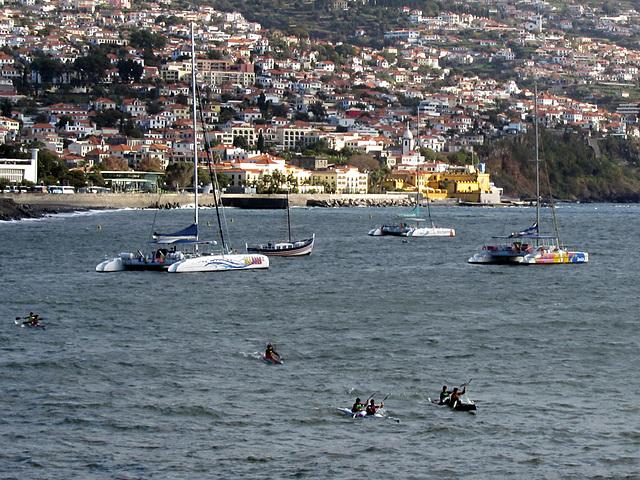 IMG 3262 Hafen Funchal