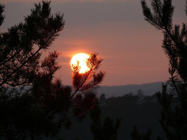 Sonne 2012