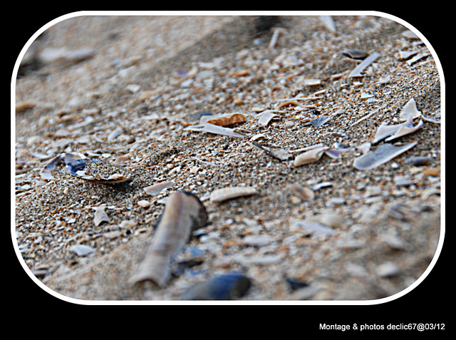 Plage de sable fin....???
