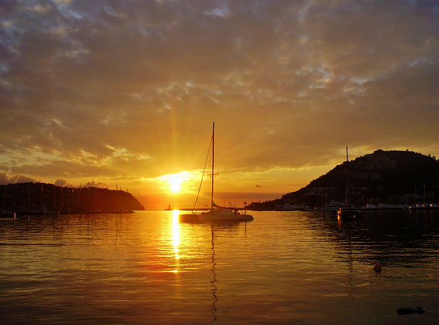 Puerto de Andratx. Mallorca