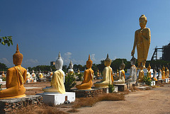 A park with hundreds Buddhas