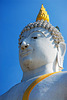 The sublime face of lord buddha