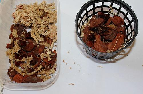 substrat de rempotage et panier