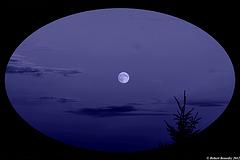 La lumière de la nuit ....