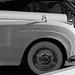 Bentley (2309)