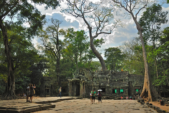 Ta Prohm the temple of the Strangler Figs