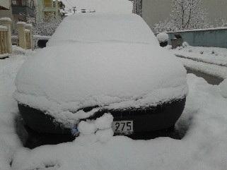 under the snow 2012-01-27 11
