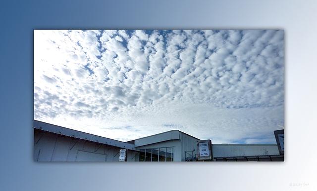 clouds carpet