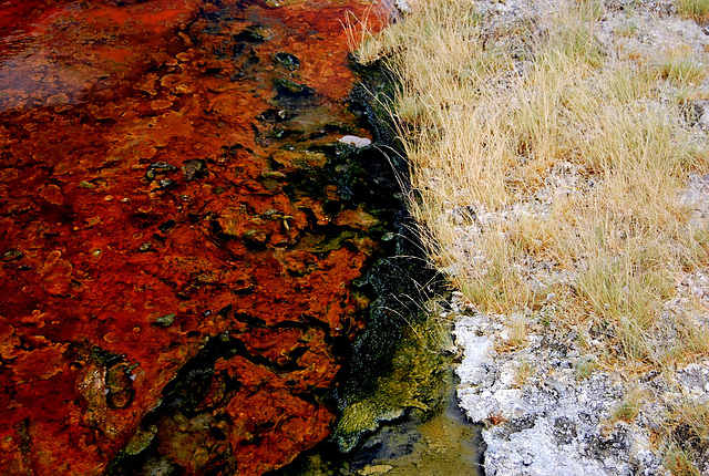 Hot spring and mineral deposits