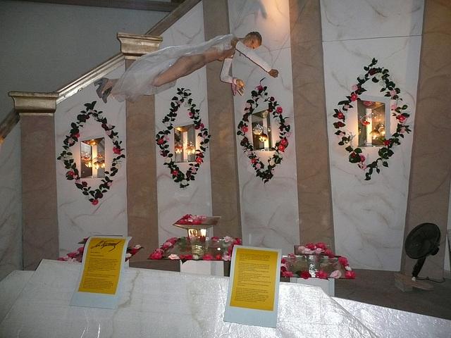IX. Deutsche Kamelienblütenausstellung im Barockschloß Zuschendorf bei Pirna