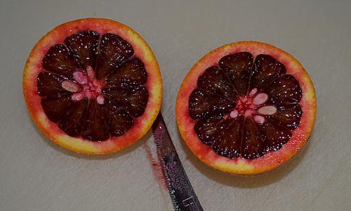 Oranger sanguinelli DSC 0346