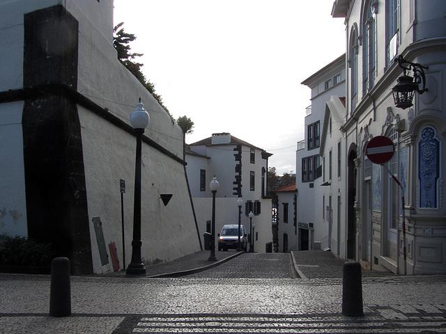 IMG 3272 Funchal