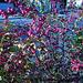 Buissons de baies mauves
