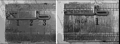 Favorit needle 72 and 96 guage plate