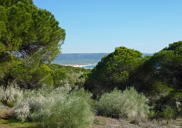 Spain Feb 2012 053