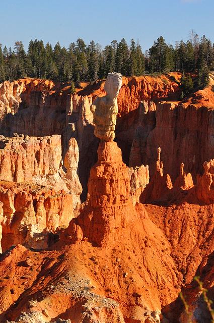 bryce canyon, les cheminées de fées