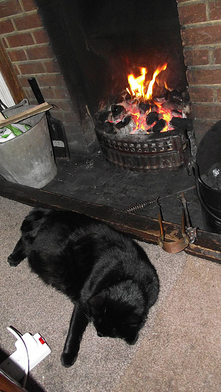 Now she's in her element - in front of the fire