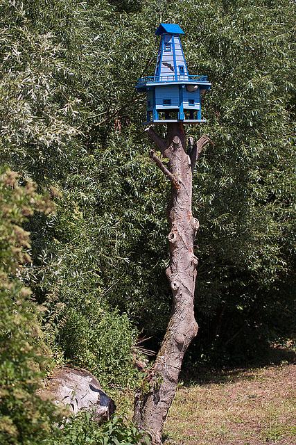 20110617 5987RMw Vogelhaus