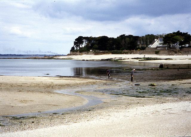 Bretagne, Muschelsucher