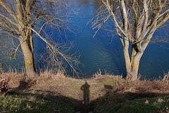 L'ombre d'un pygmée