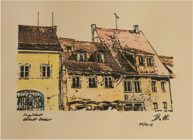 2012-01-02 Ingolstadt-Altstadt-Daecher-web
