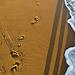 Feetprint design