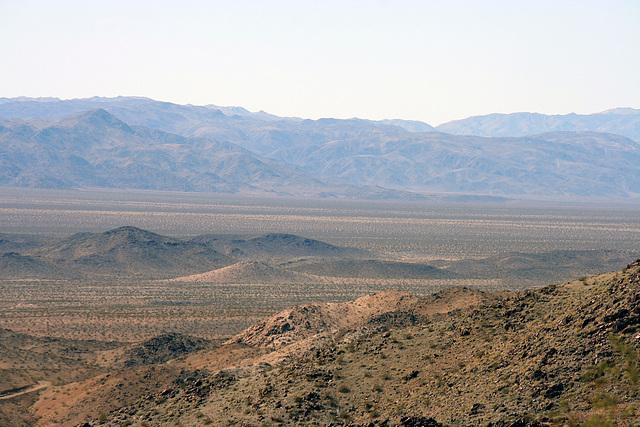 Joshua Tree National Park (3259)