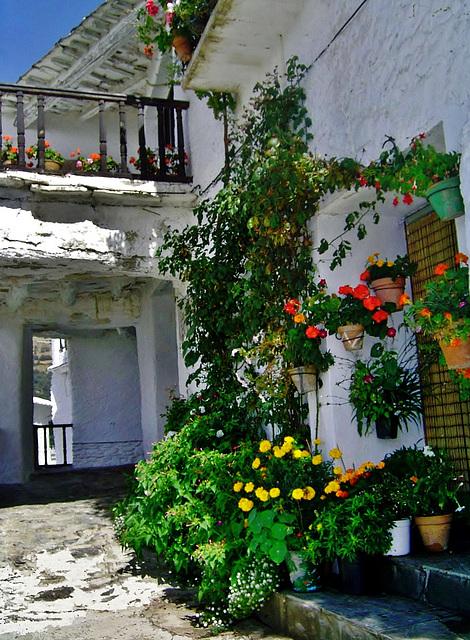 Arquitectura morisca de las Alpujarras.     No es un patio, es una calle !