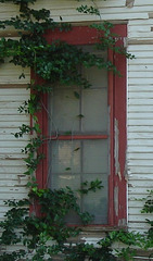 Maison texane / Texmade house - Jewett, USA / États-Unis - 6 juillet 2010 - Recadrage