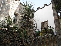 Balcon botanique / Botanical balcony - April 4th 2011.