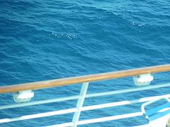Crucero a Italia 12-5-2012